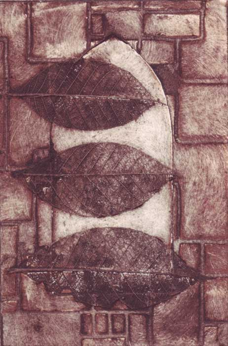 obscure - collagraph