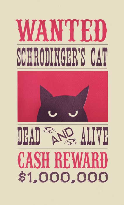 schrodinger's cat - screenprint