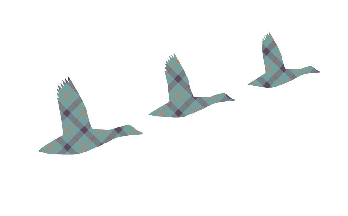 0238-flying-ducks-flower-of-scotland