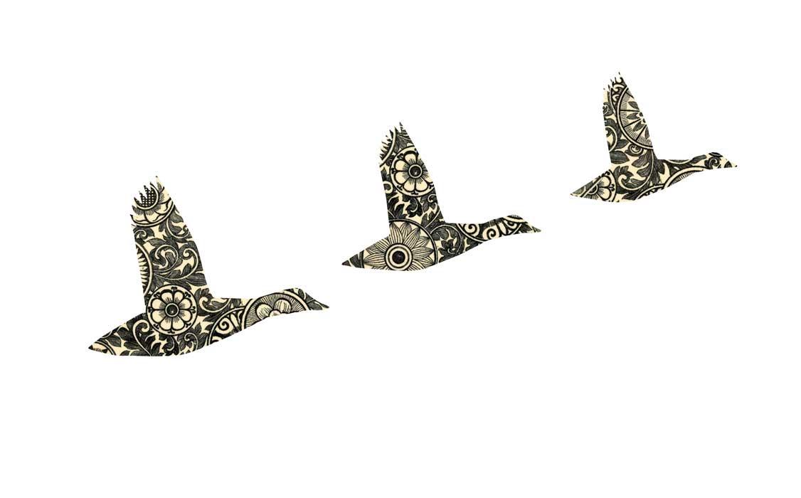 0238-flying-ducks-victoriana