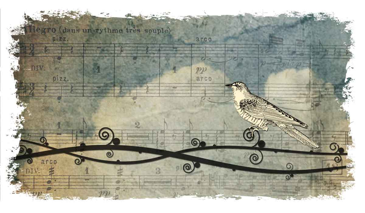 0256-and-your-bird-can-sing-1