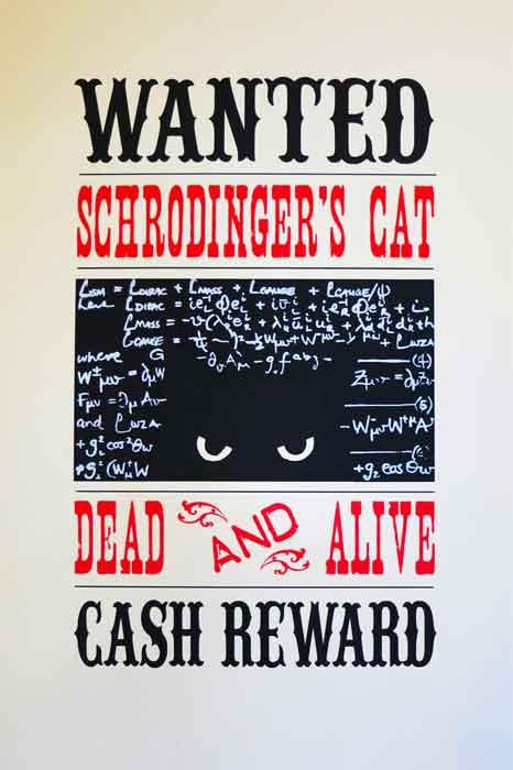 schrodinger's cat II