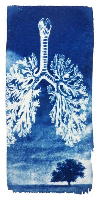 0538-breathe