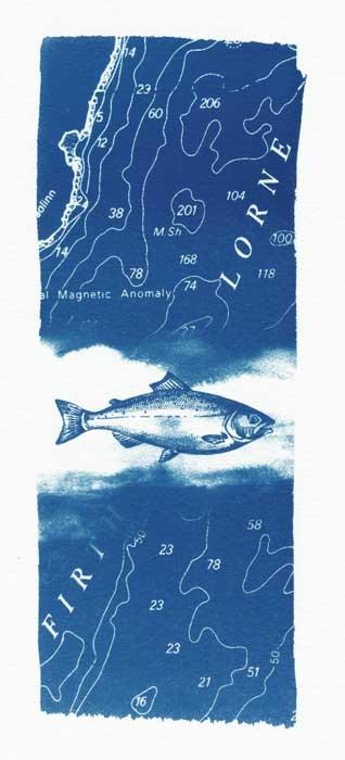 sea II - cyanotype