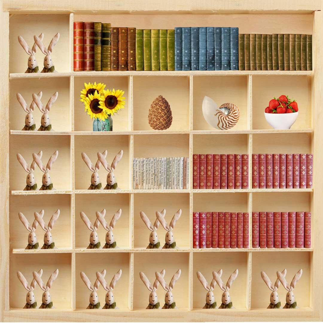 0812-fibonaccis-bookcase-a