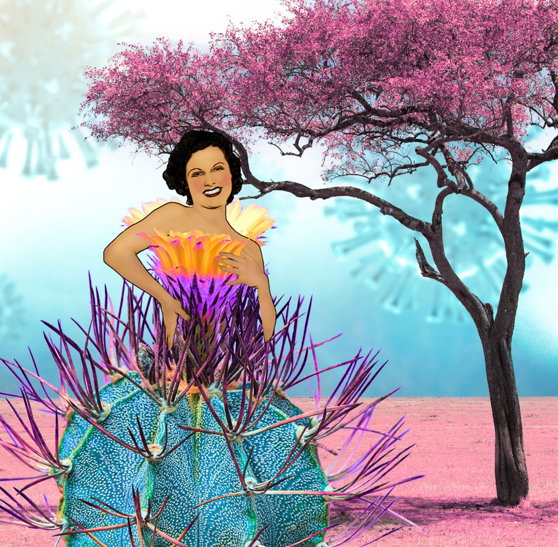 pandemic-couture-cactus