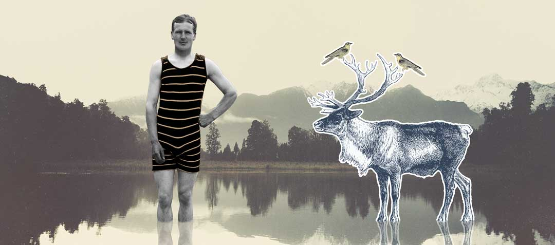 adkins-moose